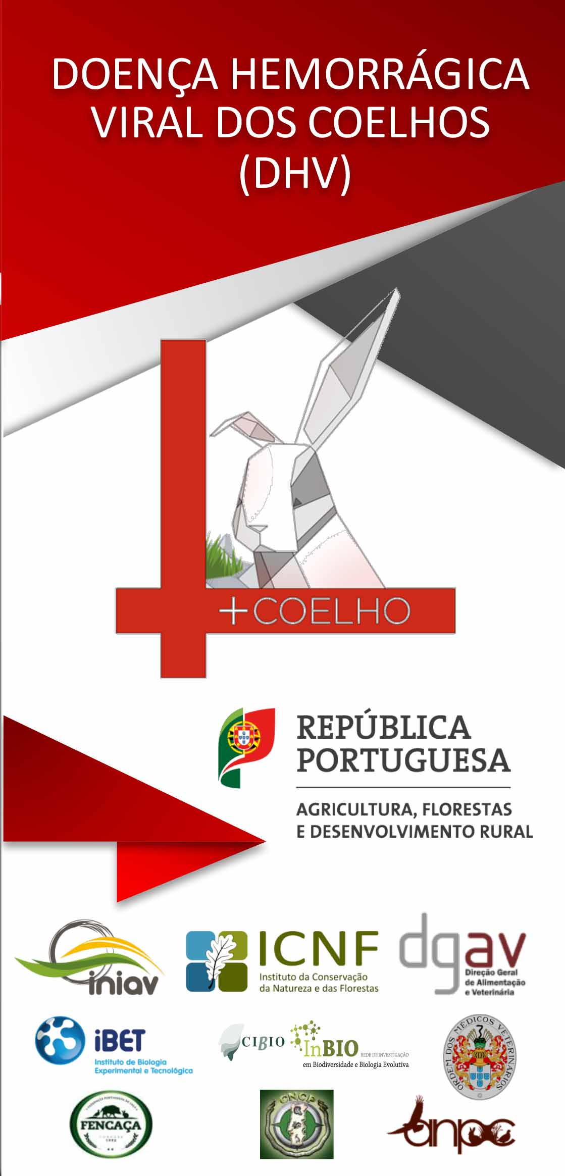 Flyer +Coelho