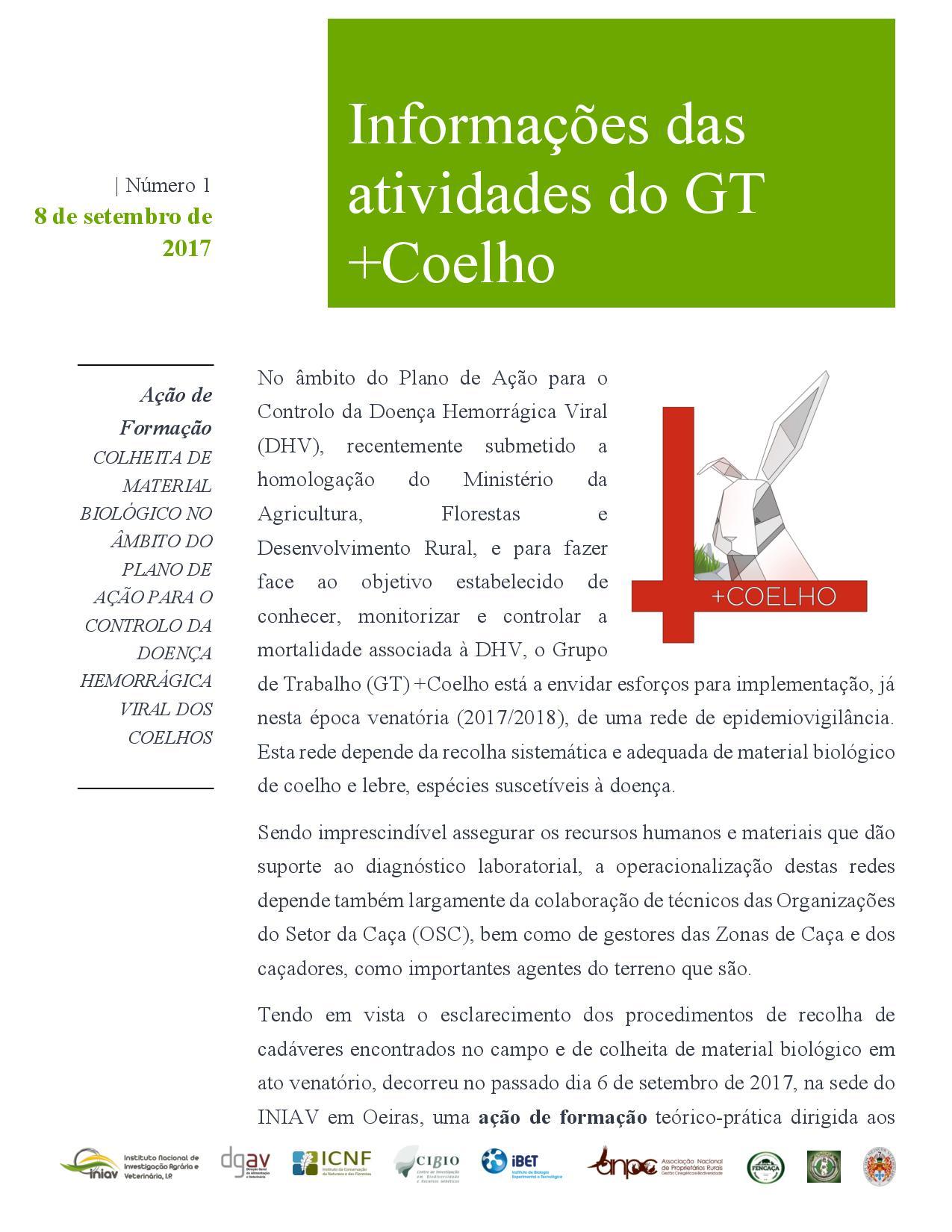 Informações das atividades do GT+Coelho